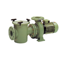 Astral Commerical Pool Pumps